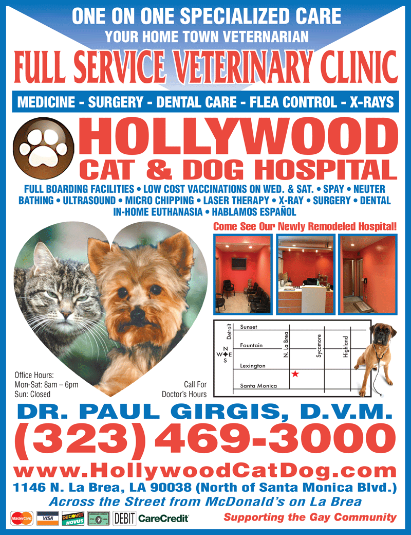 HOLLYWOOD CAT & DOG HOSPITAL